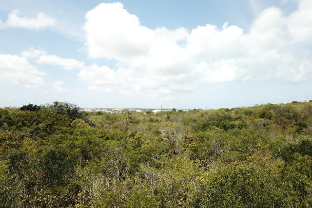 Affordable Ocean View Vacant Land